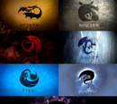 Dragon Classes