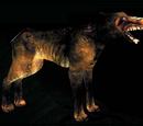 Criaturas de la oscuridad