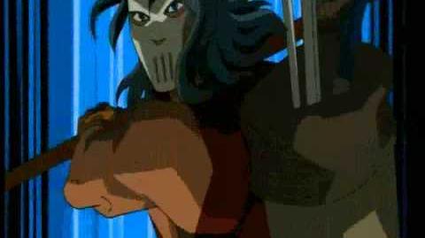 Teenage Mutant Ninja Turtles (2003 TV series)/Theme Song