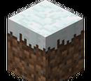 Top Snow