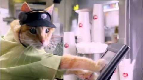 Catshiers - Jack in the Box®