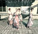 Frakcje z Assassin's Creed IV: Black Flag
