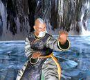 Gen Fu/Dead or Alive 3 costumes