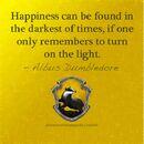 Albus Dumbledore quote.jpg