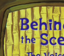 Behind the Scenes: The Voices of SpongeBob & Friends (transcript)