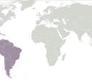 Kamerplant uit het Neotropisch gebied