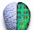 Neuro-Psychic Knowledge