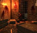 Hole Station Massacre