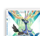Pokémon X and Y Walkthrough