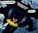 Bat-Glider/Images