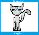 Silverstar (Up for Adoption)