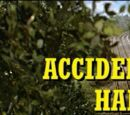 Accidents Will Happen/Gallery
