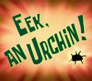 Eek, an Urchin!