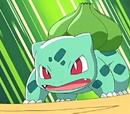 Bulbasaur de Ash