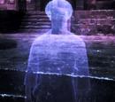 Morven Stroud