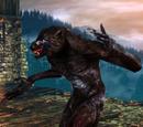 The Witcher 2 bestiario