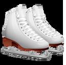 Asset Skates (Pre 08.14.2015).png
