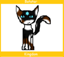 Batstar (Up for Adoption)