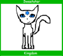 Sweetstar (Up for Adoption)