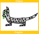 Ashpaw (Up for Adoption)