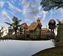 Сейда Нін (Morrowind)