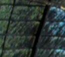 Raphael (Next Mutation)