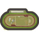 Medium sized race track