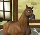 Hästar i level 9