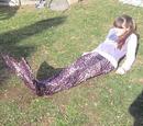 Mermaid Magic (Olivia Rose)