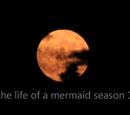 Life of a Mermaid