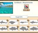 Piotrekkk/Caribbean – New fishery