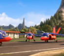 Falcon Hawks
