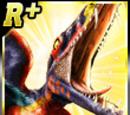 Rare Dimorphodon