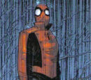 Peter Parker (Earth-312500)