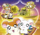 Hamtaro: The Captive Princess