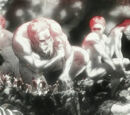 Titans (Attack on Titan)