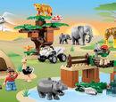 6156 Le safari