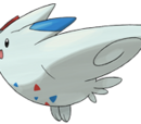 Elise's Togetic