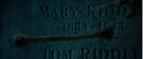 Mary Jedusor.png