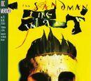 Sandman Vol 2 73