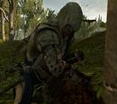 Zwierzęta z Assassin's Creed III