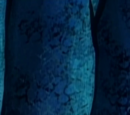 Patrick's skeleton