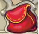 Bag of Mushrooms.png