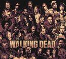 My The Walking Dead series Wiki