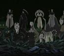 Nove Bestas Mascaradas
