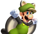 Flying Squirrel Luigi
