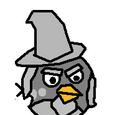 Wizard Grey Bird