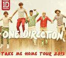 Take Me Home Tour