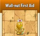 Wall-nut First Aid