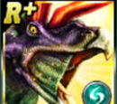 Rare Nedoceratops